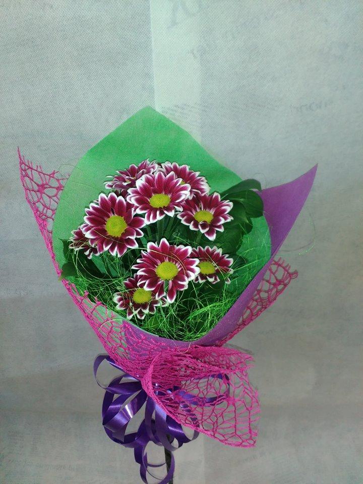 Цветна Хризантема