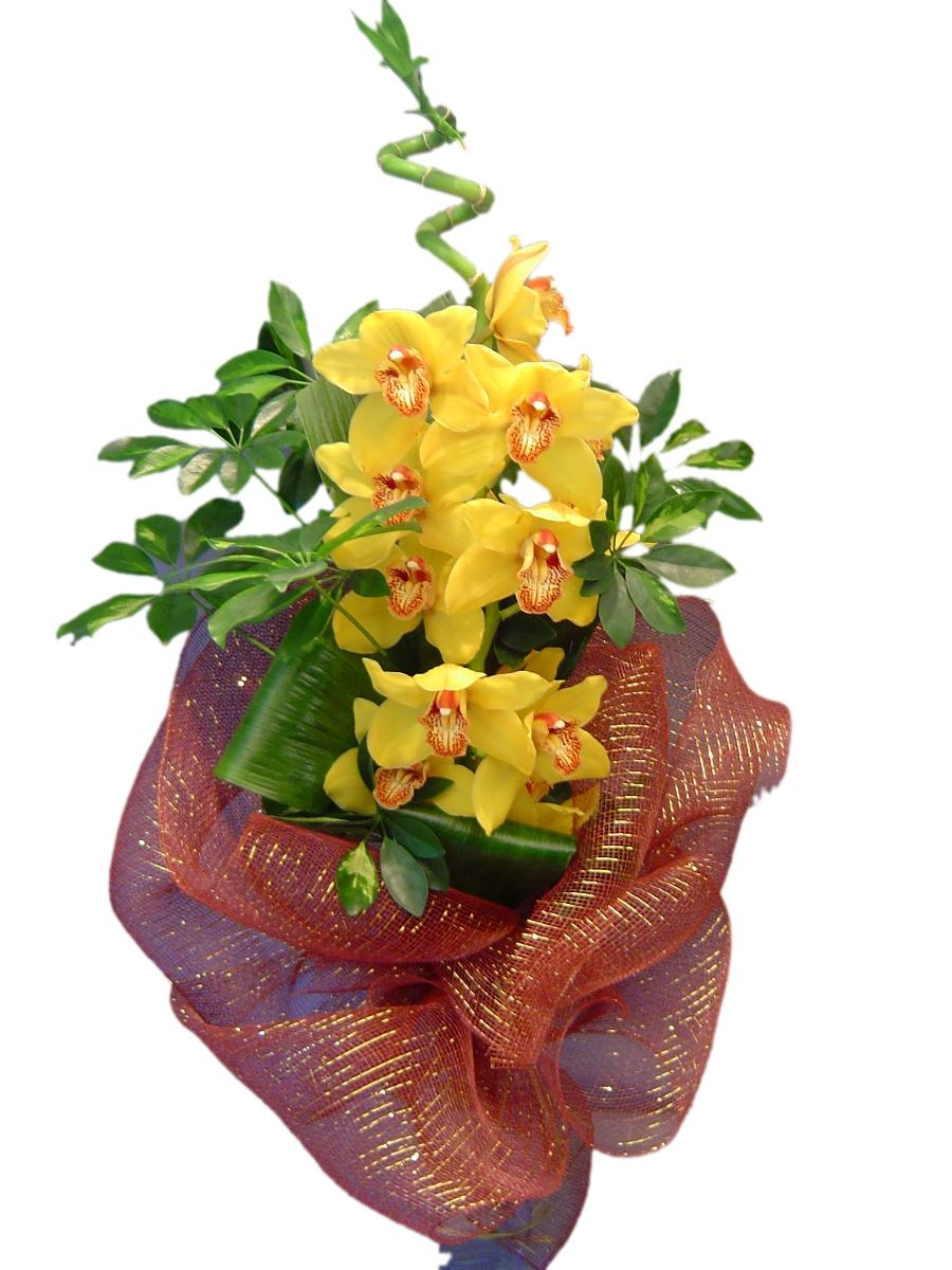 "Орхидея ""Цимбидиум"""