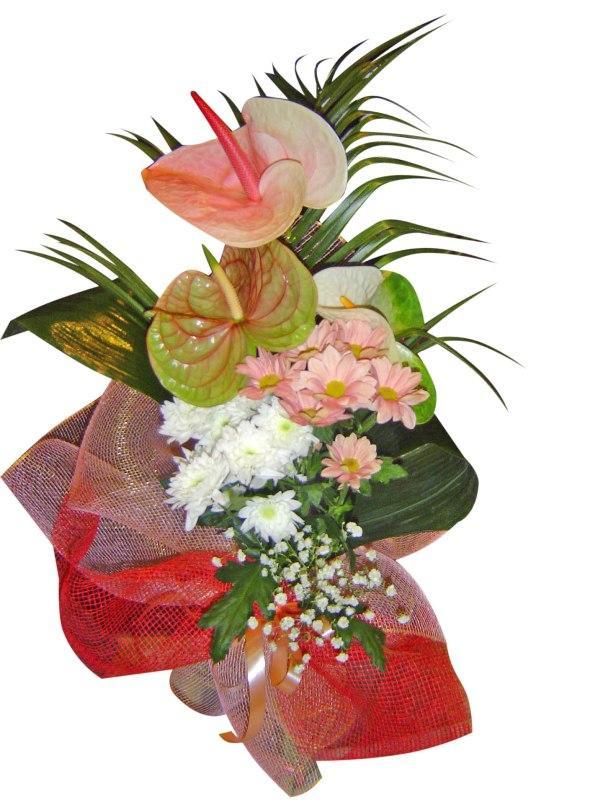 Антуриуми и хризантеми